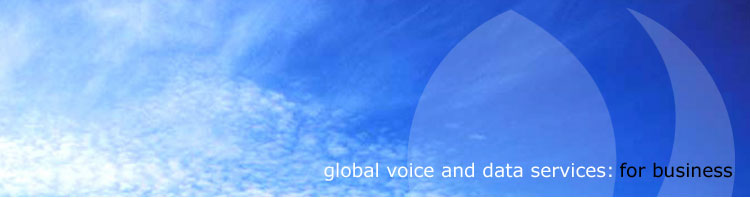 global voice and data services for business
